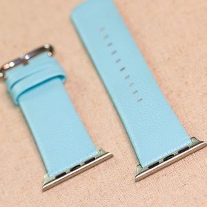Accessories - Aqua 42mm iwatch Band